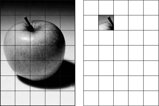 Drawing Using Grid Lines : Using a grid to enlarge and transfer an image canvas