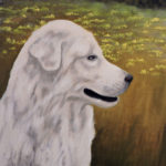 white dog pet portrait