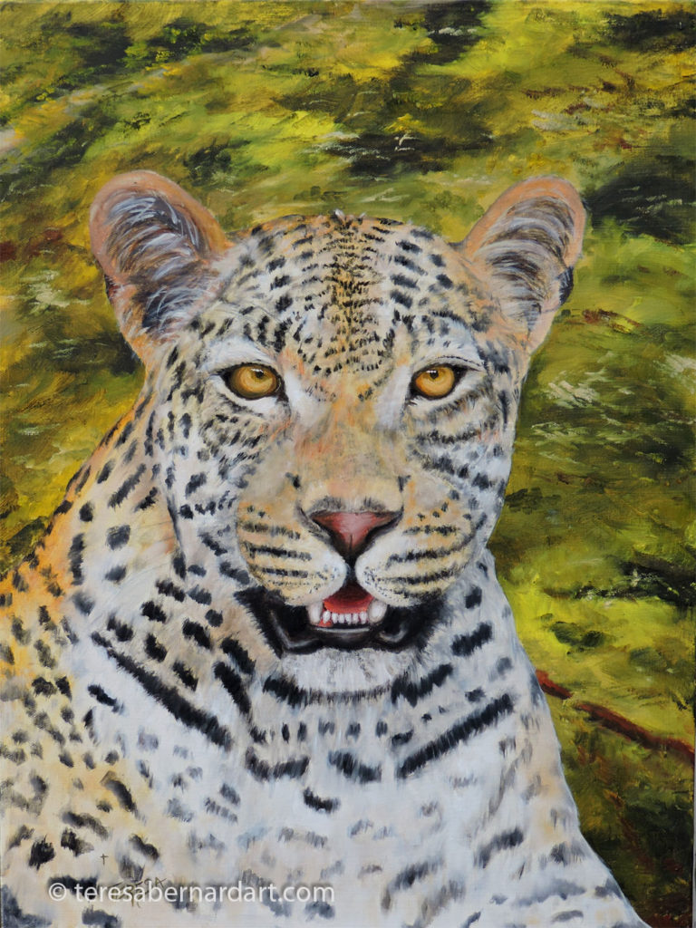 Africa wildlife leopard painting