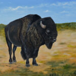 American Bison Our National Animal By Teresa Bernard