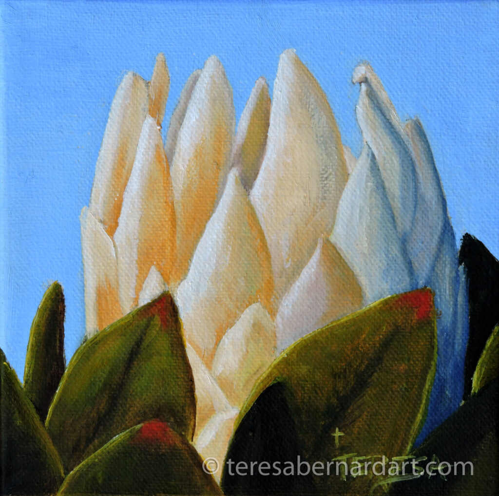 Protea Flower painting by Teresa Bernrd